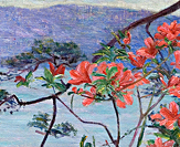 Suruga Bay, Azaleas