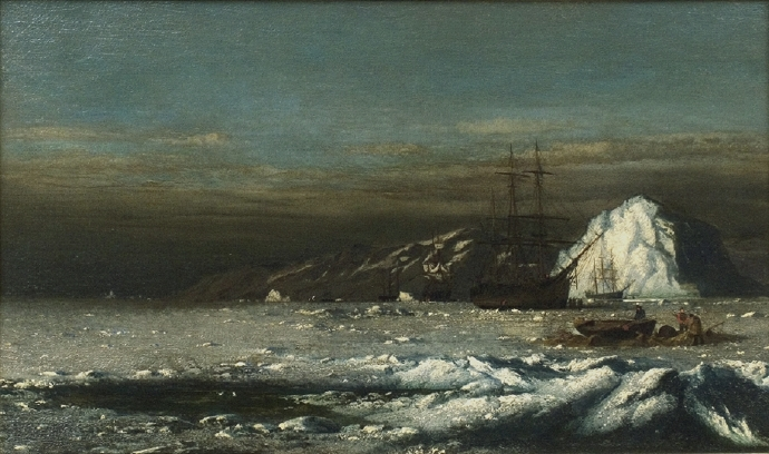 Polar Night, Labrador