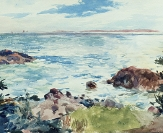 Coastal View with Sailboats